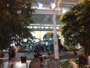Inside the Plus-15 at Devonian Gardens