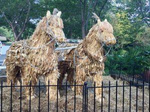 Cornstalk horses.