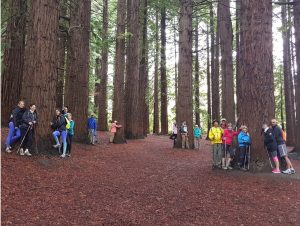 "The whole group ""hugging"" Redwood trees at the base of Te Mata Peak"