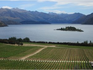 View of Wanaka Lake from Rippon Winery