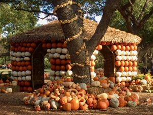 Pumpkin House at Pumpkin Village